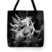 Mandarin Honeysuckle Vine 1 Black And White Tote Bag