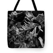 Mandarin Honeysuckle Vine 2 Black And White Tote Bag
