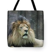 Mane Standing Up Around The Head Of A Lion Tote Bag
