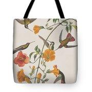 Mango Humming Bird Tote Bag