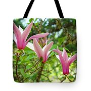 Mangolia Tree Flowers Art Prints Pink Magnolias Baslee Troutman Tote Bag