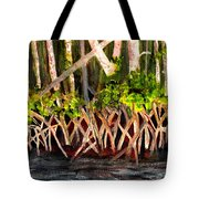 Mangrove At Gumbo Limbo Tote Bag