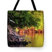 Mangroves Of Roatan Tote Bag