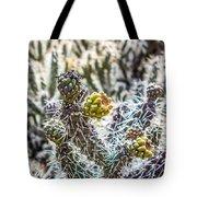 Many Stems Of Poky Small Cactus In Desert Tote Bag