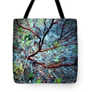 Manzanita Abstract Tote Bag