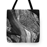 Manzanita Black And White Tote Bag