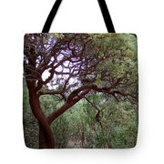 Manzanita Tree By The Road Tote Bag