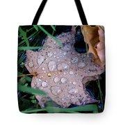 Maple Dew Tote Bag