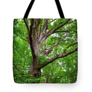 Maple Hand Tote Bag