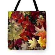Maple Leaf Colors Tote Bag