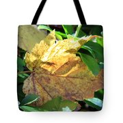 Maple Leaf Tote Bag by Kathy DesJardins
