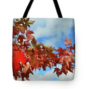 Maple Leaves Against The Sky  Tote Bag