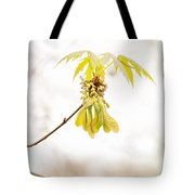 Maple Leaves And Fruits Tote Bag