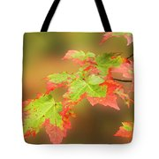 Maple Leaves Changing Tote Bag