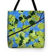 Maple Leaves Tote Bag