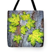 Maple Mania 12 Tote Bag