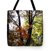 Maple Mania 16 Tote Bag