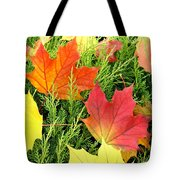 Maple Mania 5 Tote Bag
