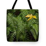 Maple On Fern Tote Bag