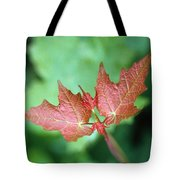 Maple Red And Green Tote Bag