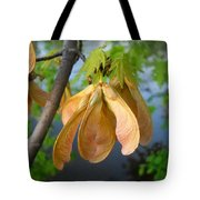 Maple Seeds In May Tote Bag