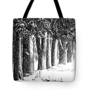Maple Street Maples Tote Bag