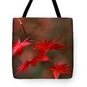 Maple Tree Leaves II Tote Bag