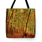 Maple Woods Trail 2 Tote Bag