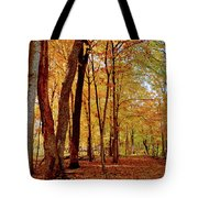 Maple Woods Trail 3 Tote Bag