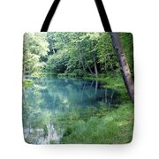 Maramec Springs 1 Tote Bag