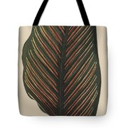 Maranta Regalis Tote Bag