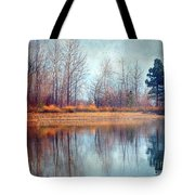 March 1 2010 Tote Bag