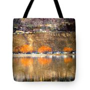 March 13 2010 Tote Bag