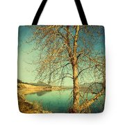 March 24 2010 Tote Bag