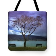 March 30 2010 Tote Bag
