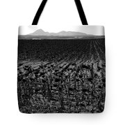 March Of The Sunflowers Tote Bag