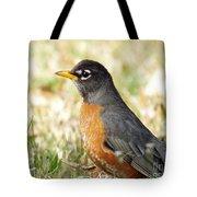 March Robin Tote Bag