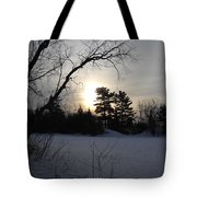 March Sunrise Behind Pines Tote Bag