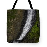 March Waterfall Tote Bag