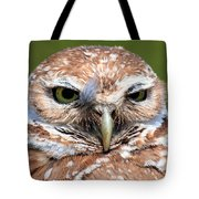 Marco Burrowing Owl - I Know What You're Thinking Tote Bag