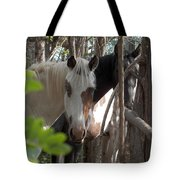 Mares In Trees Tote Bag