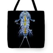 Marine Copepod, Lm Tote Bag