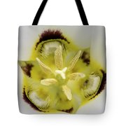 Mariposa Lily 3 Tote Bag by Roger Snyder