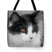 Marley Cat Meowning Tote Bag