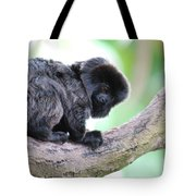 Marmoset Sitting Perched In A Tree Tote Bag