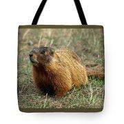 Marmot Tote Bag