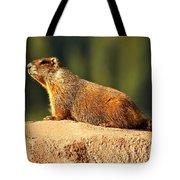 Marmot Life Tote Bag