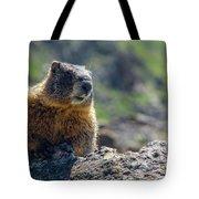 Marmot On The Ridge Tote Bag