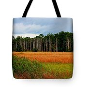 Marsh And Trees Tote Bag