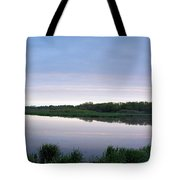 Marsh Calm Tote Bag